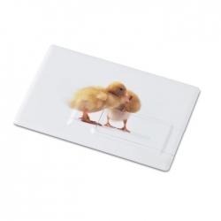 Creditcard. usb flash 16gb     mo1059-06