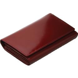 Portfel 33001303